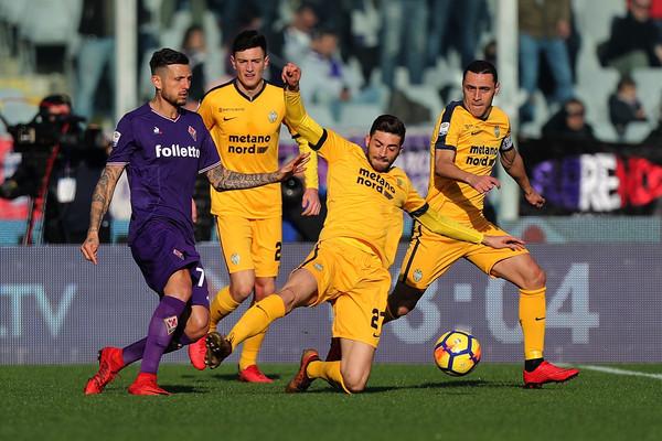Fiorentina-Hellas Verona
