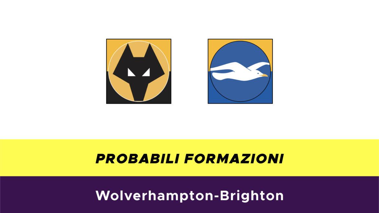 Wolverhampton-Brighton probabili formazioni