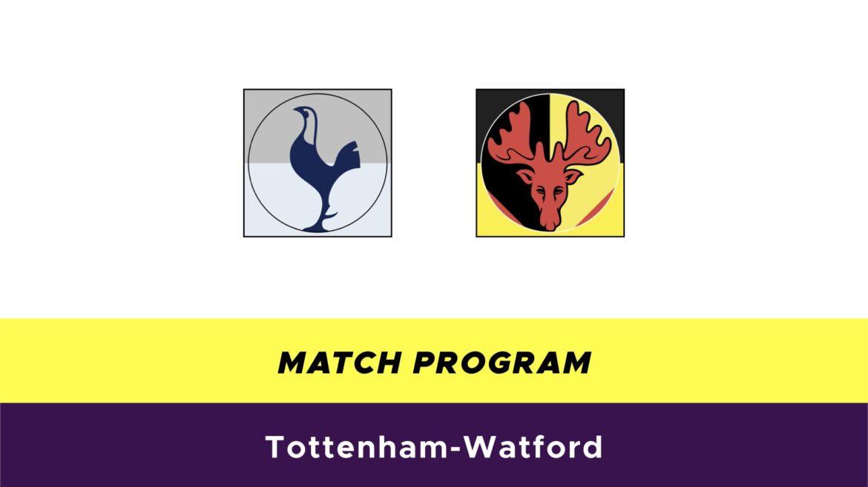Tottenham-Watford probabili formazioni