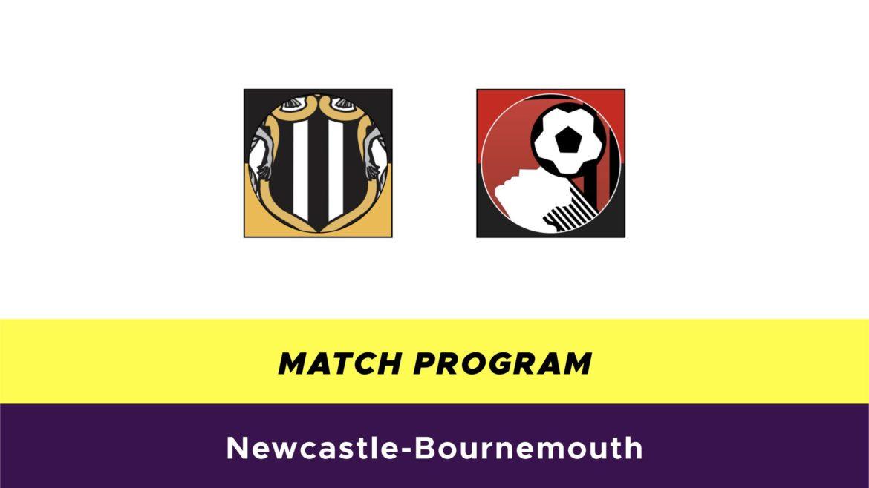 Newcastle-Bournemouth probabili formazioni