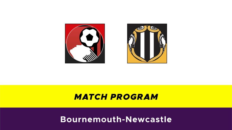 Bournemouth-Newcastle probabili formazioni