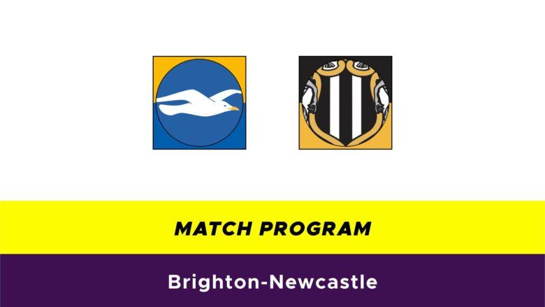 Brighton-Newcastle probabili formazioni