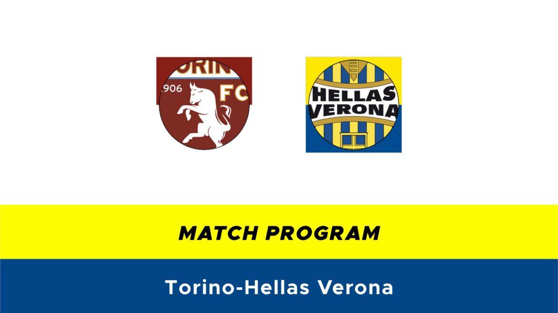 Torino-Hellas Verona probabili formazioni